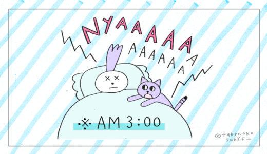 【早朝、猫に起こされる】明け方の、毛むくじゃらアラームと、その対策。